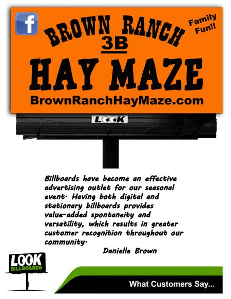 What-LOOK-Advertisers-Say-Brown-Hay-Maze